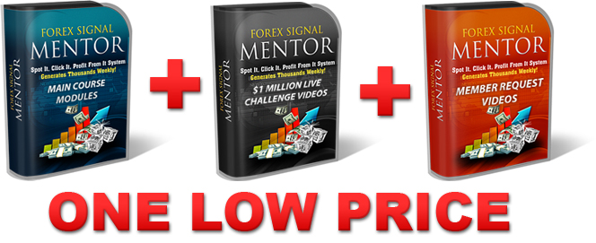 Forex Mentor Program Bundle